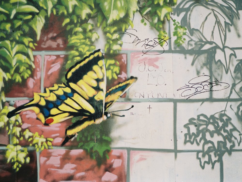 Pioneer Square : butterfly graffiti art