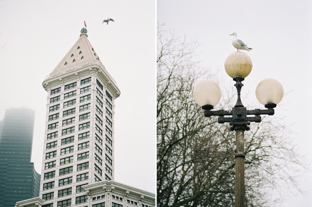 Pioneer Square : smith tower and seagulls