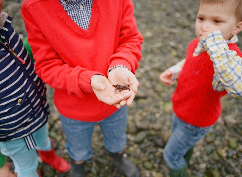 family photographer north seattle : oldest brother holding little crab
