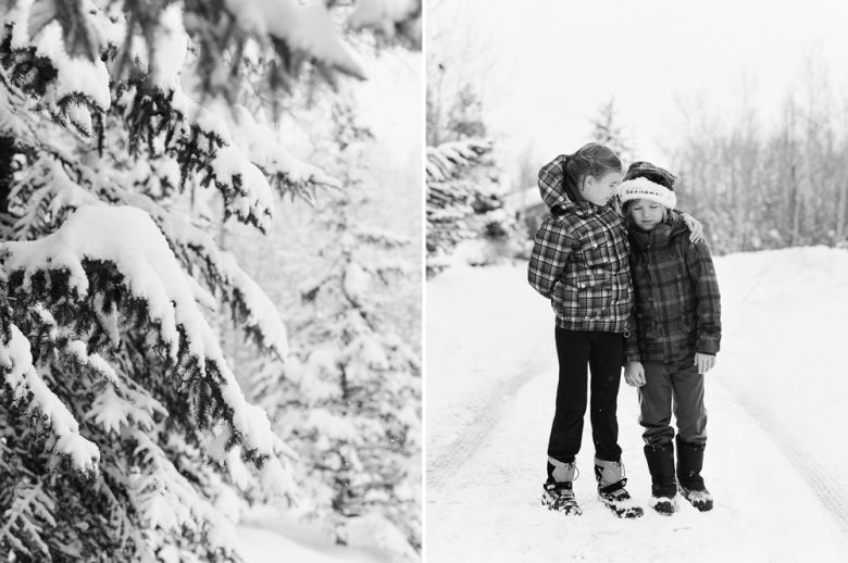 How to use the zone system by ansel adams snow scene with trees and kids