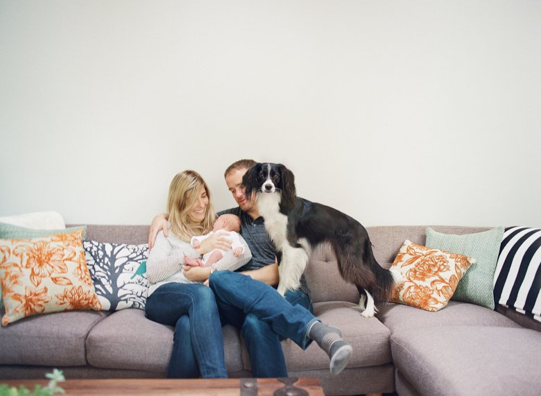 newborn photography seattle | newborn family photo with dog on couch
