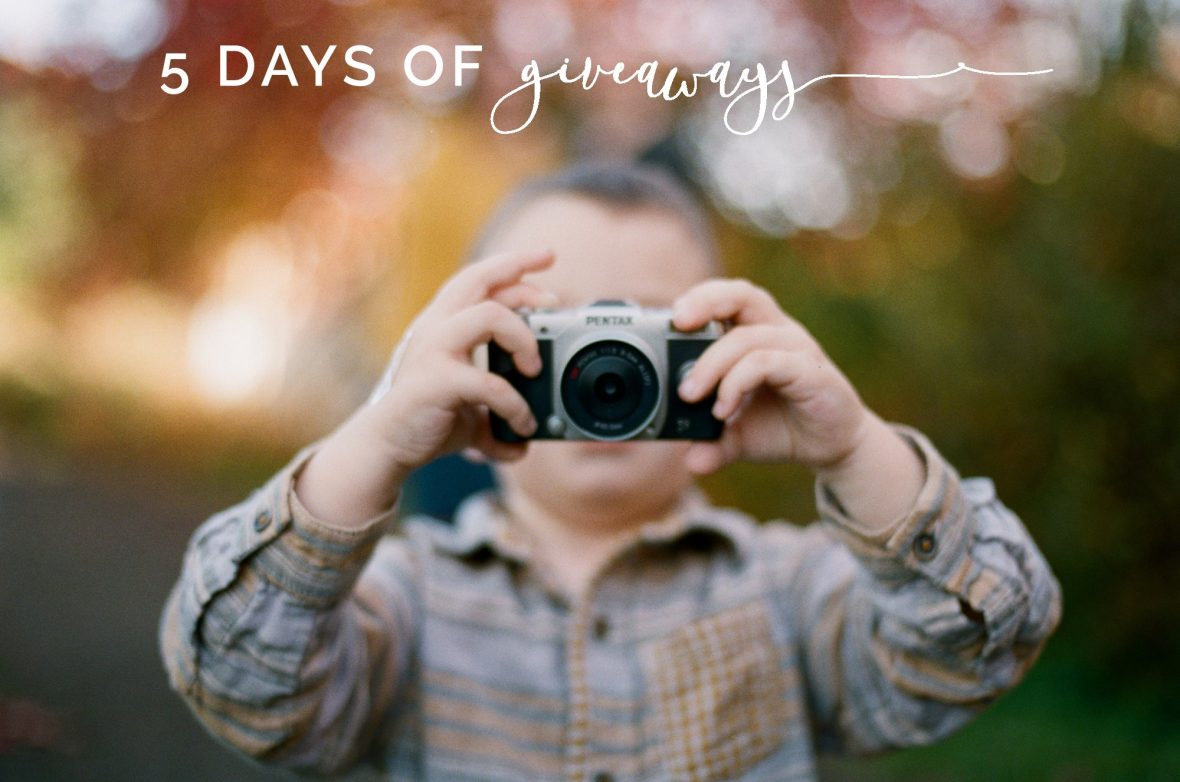 5 days of giveaways seattle family photographer