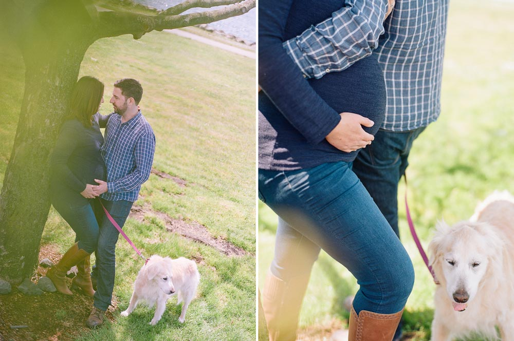 seattle maternity photographer : couple hanging out under tree at Myrtle Edwards Park with dog