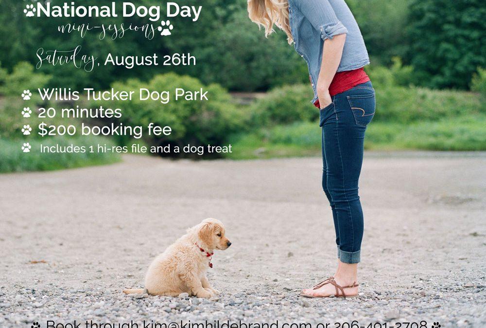 National Dog Day Mini-Sessions : Pet Photography Seattle WA