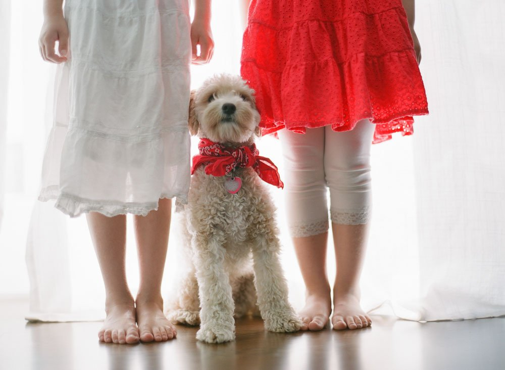 family photographers seattle : dog standing between girls